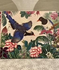 Carnet illustré oiseaux...