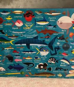 Puzzle : Ocean life